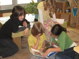 opal book study
